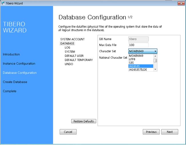 Tibero Installer - Database Configuration